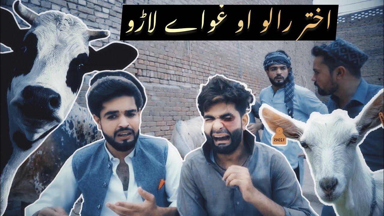Download Akhtar raglo aw ghwaye laro  || Ok Boys || Bakra Eid Funny video