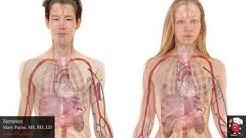 hqdefault - Fish Oil Kidney Disease