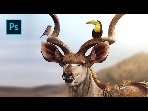 The Kudu - Photo Art Manipulations In Photoshop
