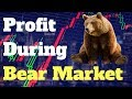 Tips To Profit During Crypto Bear Market 2018