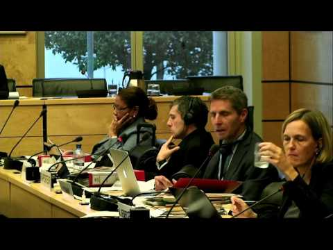 Human Rights Committee 115th Session - Draft General Comment on the Right to Life part 2