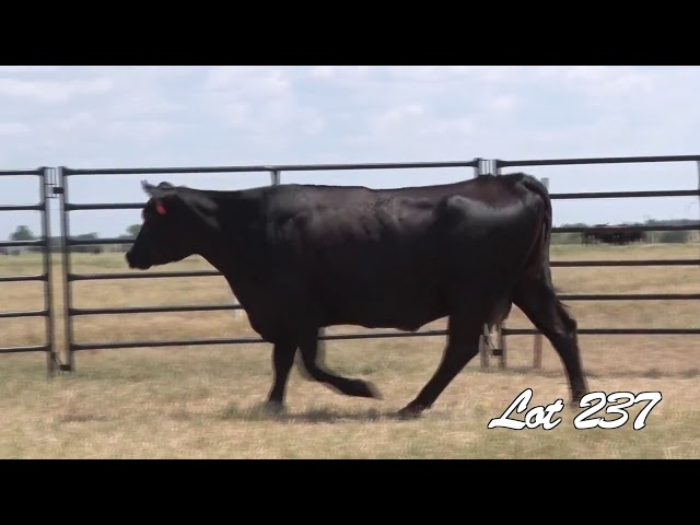 Pollard Farms Lot 237