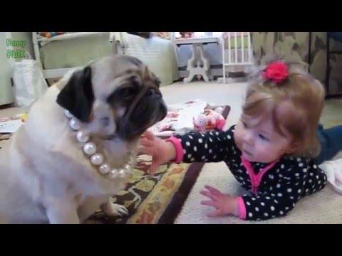 Komik hayvanlar ve Bebekler -