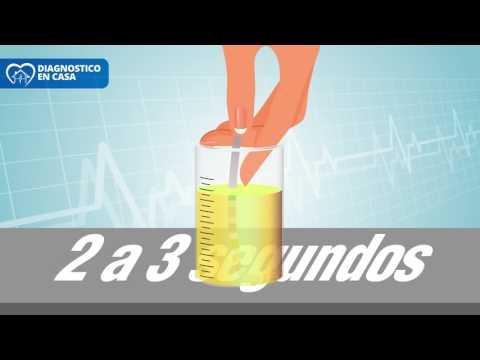 Leucocitos altos en orina y normales en sangre