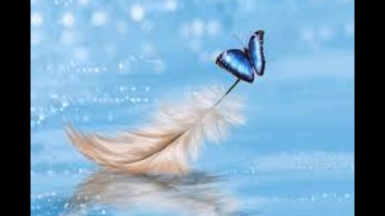 Angeli di luce le 10 regole d 39 oro youtube for Immagini da colorare di angeli