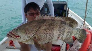Big Grouper Micro Jig, Slow Jig, Madai  S4E5 ONZZ Fishing Singapore