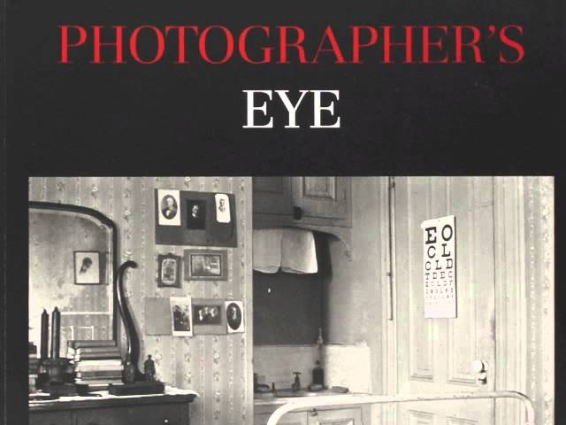 john szarkowski the photographers eye essay