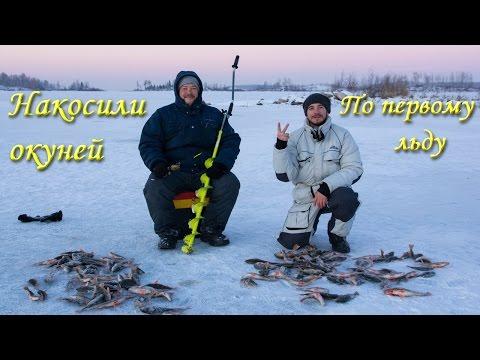 погода в аргази для рыбаков