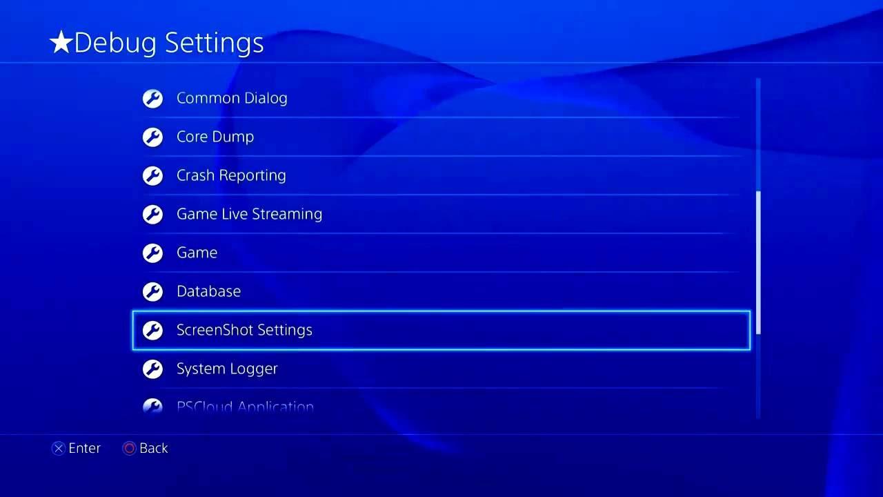 DEBUG SETTING PS4
