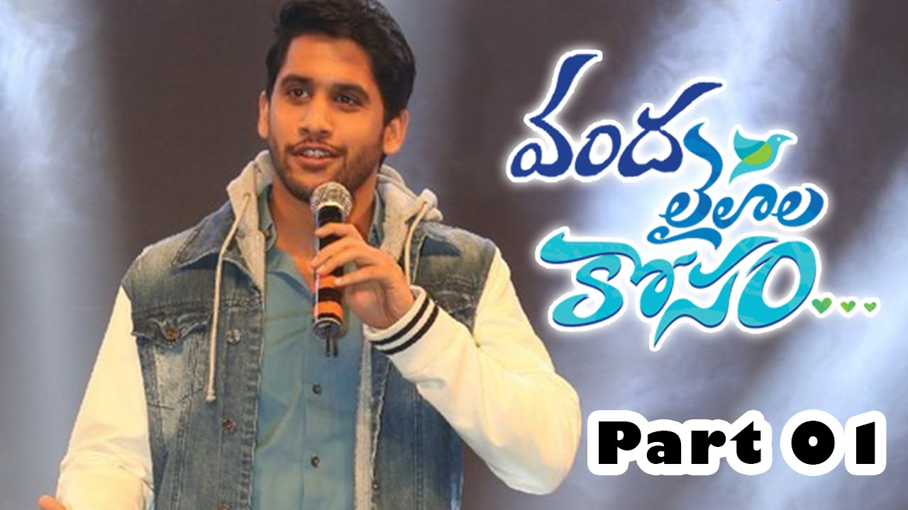 oka laila kosam audio success meet vanda naga chaitanya pooja hegde part 02