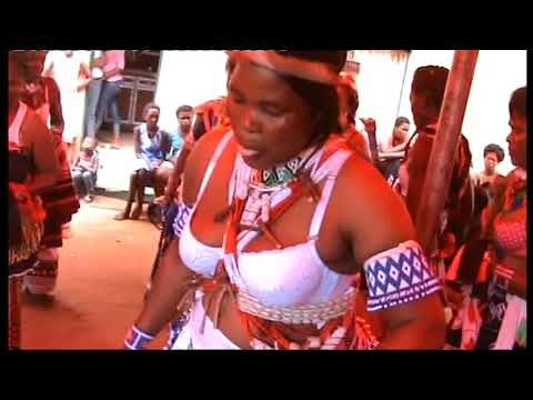 Tintwaso ta manyoni na malwandle kubongwa ingwenyama