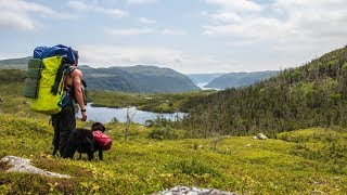 Journey Over 10,000 Year Old Fjords   Bears & Wilderness - Man and Dog (Part 1)