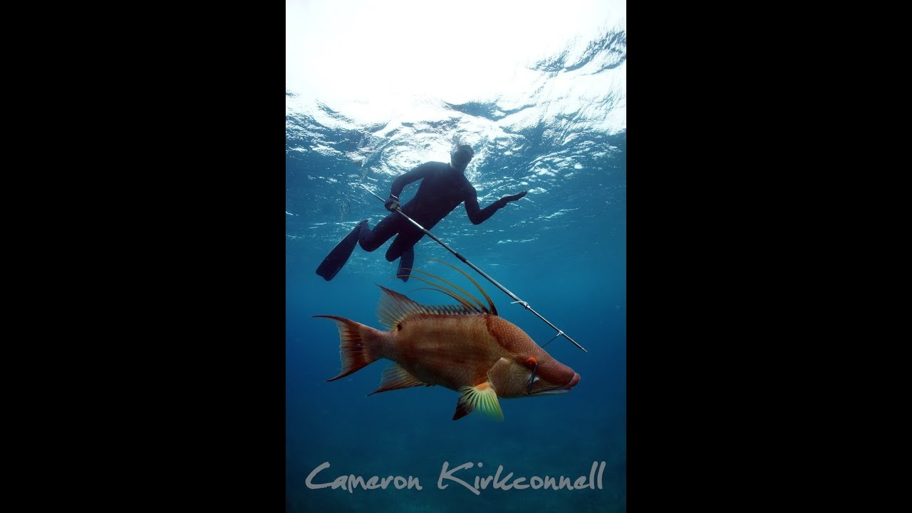 Spearfishing With Cameron Kirkconnell In The Exumas Youtube