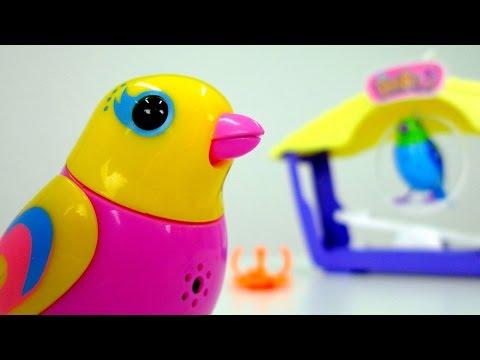 Игрушки для детей: интерактивные поющие птички DigiBirds