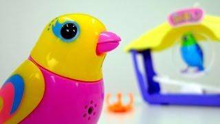 Игрушки для детей: интерактивные поющие птички DigiBirds(, 2015-05-19T03:48:44.000Z)