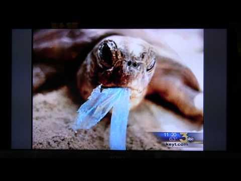 KEYT - Environment California's Campaign to Ban Plastic Grocery Bags in Santa Barbara