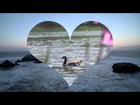 Classical Conversations Latin John 1 Music Video