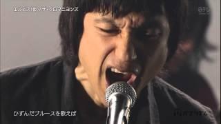 ザ・クロマニヨンズ / エルビス(仮) 2015.9.18