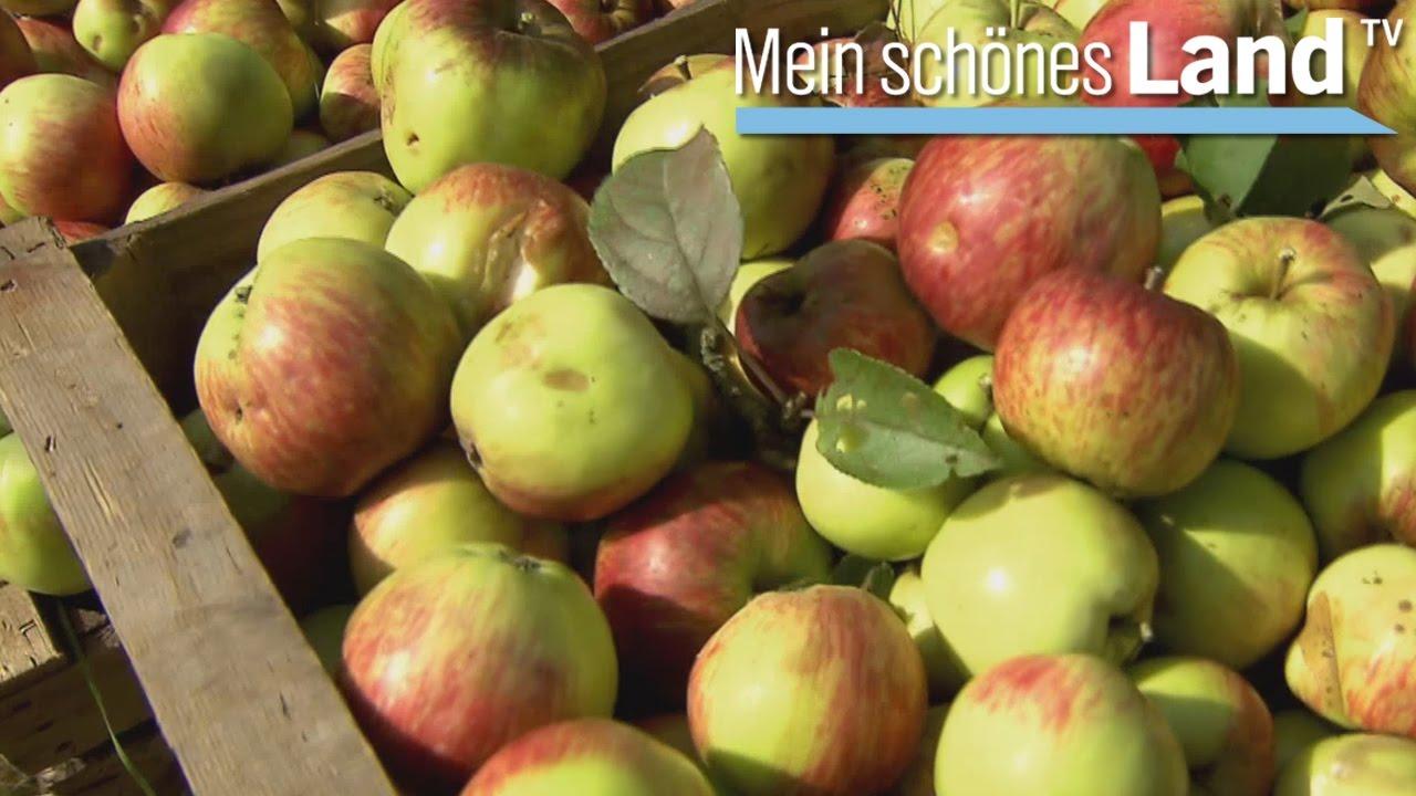 Mein Schönes Land Basteln oktober die schönsten höfe norddeutschlands ndr