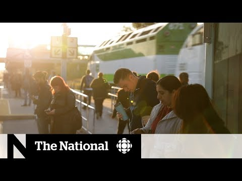 CBC News: The National: Election issues around Toronto