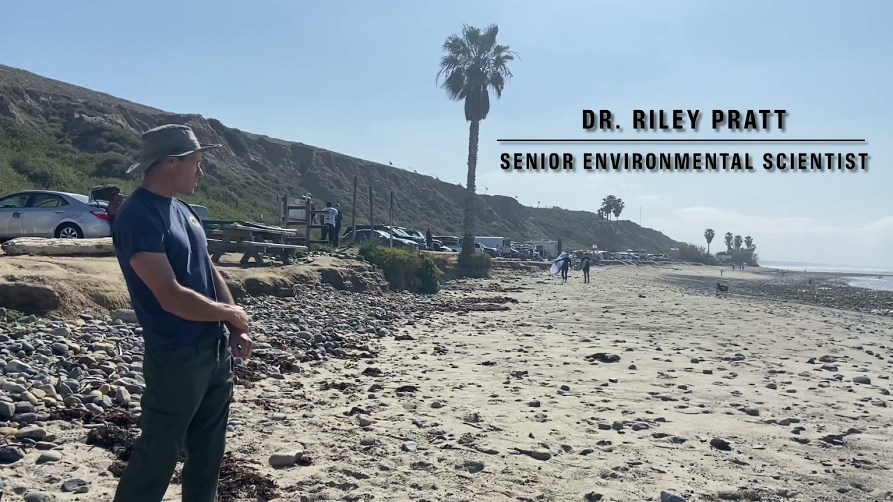 Climate Change and Sea Level Rise at San Onofre State Beach
