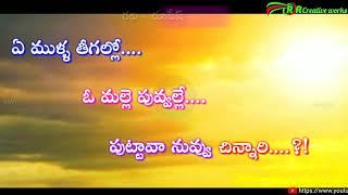 Whatsapp status videos ||  ఏ ముళ్ళ తీగల్లో ఓ మల్లె పువ్వల్లే....!