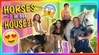 We surprise dad for Father's day with some cute horses. It was so h...