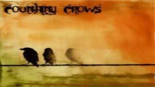 Counting Crows -  Miami ( Lyrics )