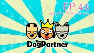 the dog partner ep 48 l อ โต ไข ต ม บราวน l 28 ส ค 59