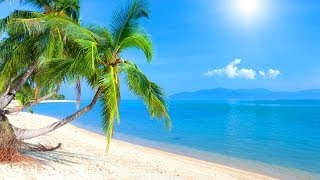 Tropical Island Music - Caribbean Dream
