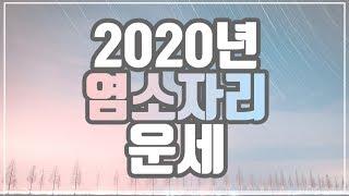 [[별자리운세]] 2020년 염소자리 운세 12월 25일 ~ 1월 19일생 l 신년운세