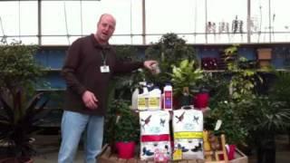 Alsip Nursery January Gardening Tips