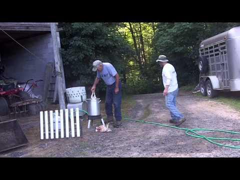 The Chicken Economy (Farmers Film Webisode 7)