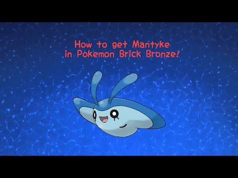 pokemon brick bronze how to get legendary dog stones