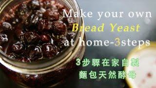 如何在家自製麵包酵母 How to make your own bread yeast at home (中英文字幕)