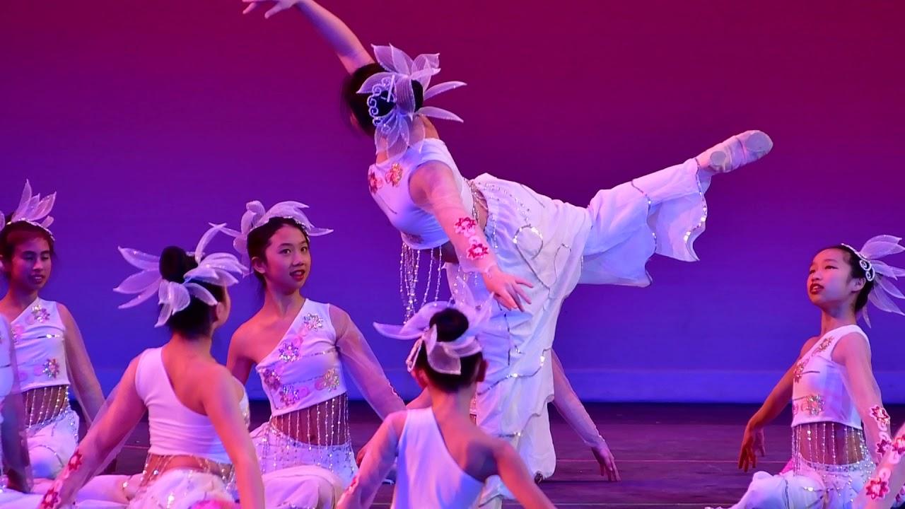 牛顿中文学校2019春晚节目:6 .舞蹈《蝶恋花》-儿童民族舞班