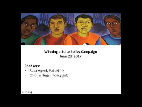 Winning a State Policy Campaign
