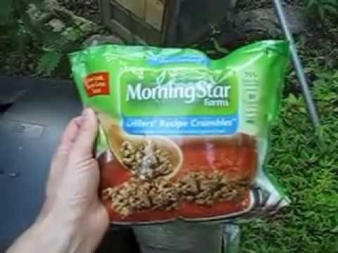 Morning Star GMO