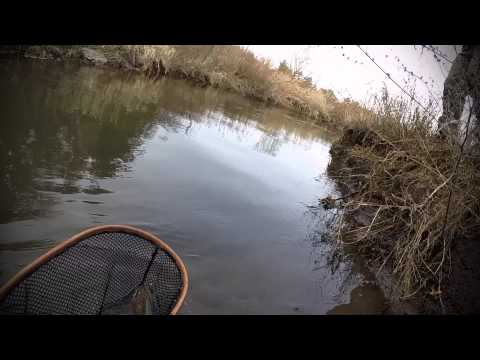 Ecuador Fly Fishing Release! Wisconsin Driftless Area