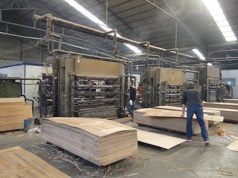 veneer lamineted door kin hot press with complete processing /  0086-139 5619 9239