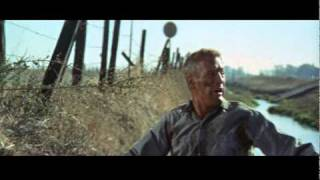 Cool Hand Luke - Trailer