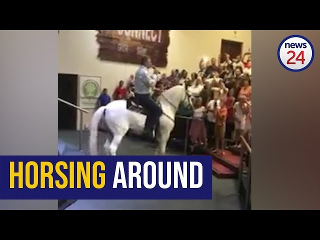 WATCH: Straight from the horses mouth - Pretoria preacher uses trusty steed to deliver sermon