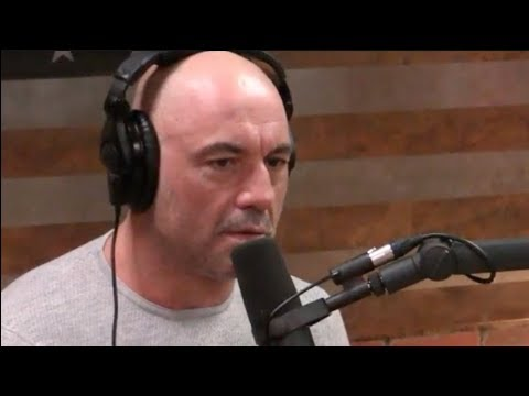 Joe Rogan on CTE & Contact Sports