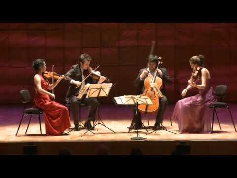 Schubert - Death and the Maiden - Hamer Quartet - 2nd Movement (part 1/2)