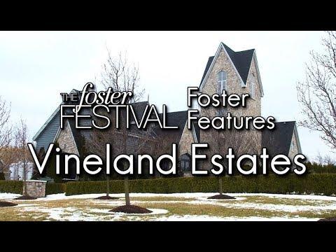 Foster Feature - Vineland Estates Winery
