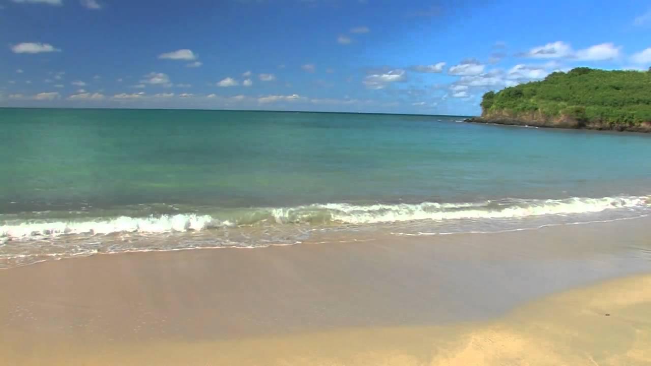 Natural Ocean Beach Sounds