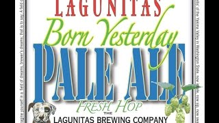 Beer Review #21 - Lagunitas - Born Yesterday Pale Ale - 7.5% ABV