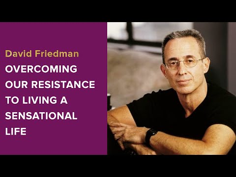 David Friedman Interview - Overcoming Our Resistance to Living a Sensational Life
