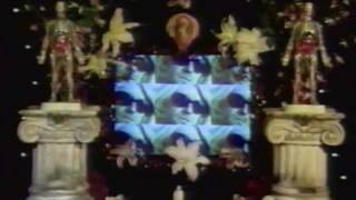 NIRVANA MTV the year in rock 1994 + movie awards tribute
