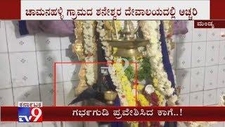 A Crow Enters Shani Temple's Sanctum At Maddur, Devotees Surprised